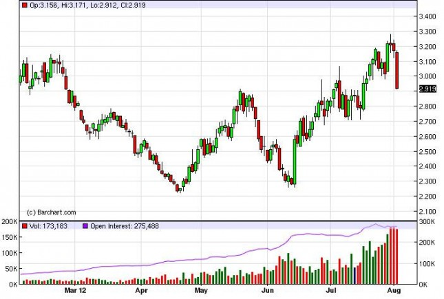 Natural Gas Forecast August 3, 2012, Technical Analysis